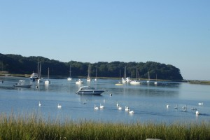 poquott harbor